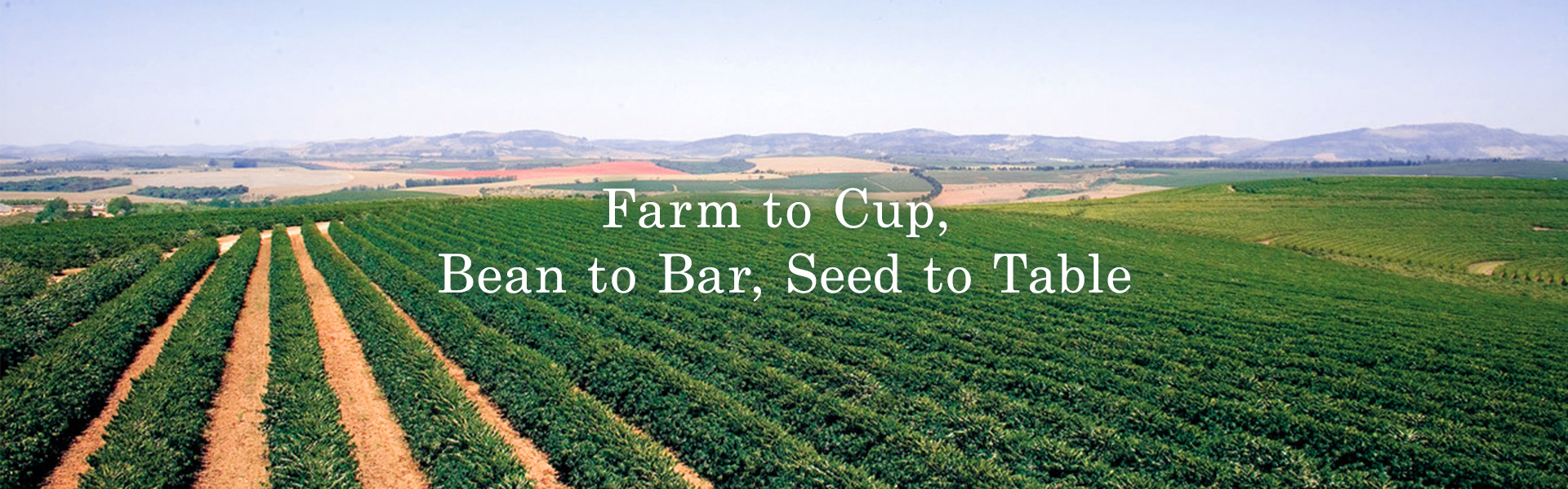 Farm to Cup,Bean to Bar, Seed to Table